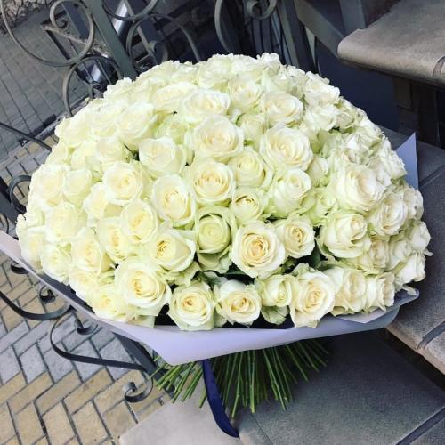 Букет Роз *Белая роза* 151 шт