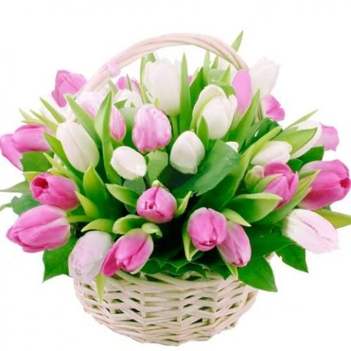 Корзина *Бело-розовый Тюльпан* 35 шт