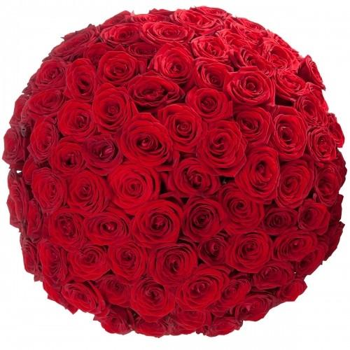 Букет Роз *Красная роза*101 шт
