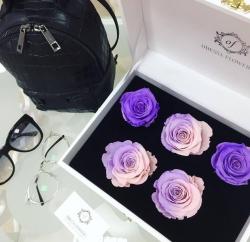 VIP *Неувядающая Роза* № 10