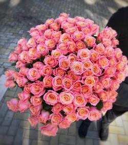 Bouquet of Roses *Miss Piggy Rose* 101 pcs.