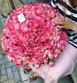 Букет Роз *Нежно-розовая роза* 251 шт