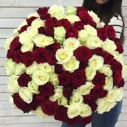 Bouquet of Roses *Red and white Rose* 101 pcs.