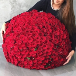 Bouquet of Roses *Red Rose* 301 pcs.