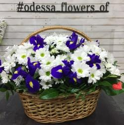 "Basket ""Chrysanthemum and Iris"""