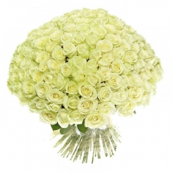 Bouquet of Roses *White Rose* 101 pcs.