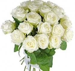 Bouquet of Roses *White Rose* 25 pcs.