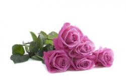 Букет Роз *Розовая роза* 5 шт