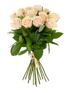 Букет Роз *Кремовая роза* 15 шт