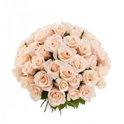 Букет Роз *Кремовая роза* 51 шт