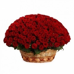 Basket *Red Roses* 251 pcs.