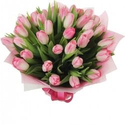 Букет *Розовый Тюльпан* 35 шт