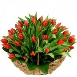Корзина *Красные Тюльпаны* 51 шт