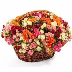Basket *Multicolored bush Roses* 101 pcs.