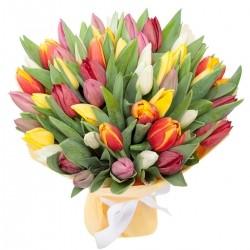 Букет *Разноцветные Тюльпаны* 51 шт