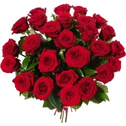 Bouquet of Roses *Red Rose* 25 pcs.
